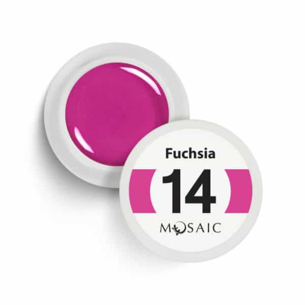 14 - Fuchsia 1