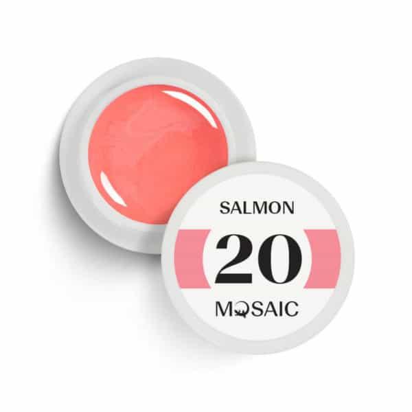 20 - Salmon 1