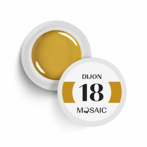 18 - Dijon 1