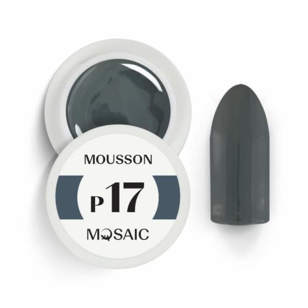 *NEW* P17 Mousson 1