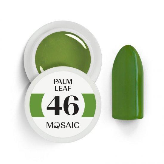 46 Palm Leaf 1
