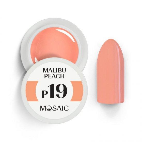 P19 Malibu Peach 1